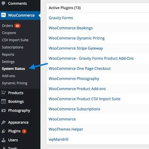 Troubleshooting WooCommerce using the System Status Report